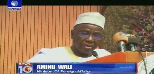 Amb-Aminu-Wali
