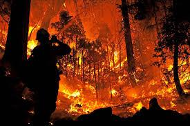 Califonian wildfire