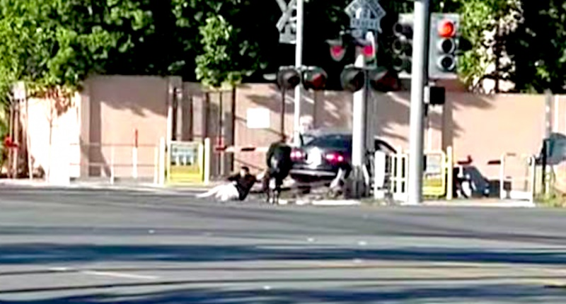 Officer-pulls-driver-to-safety-before-train-collision-via-screencap-800x430