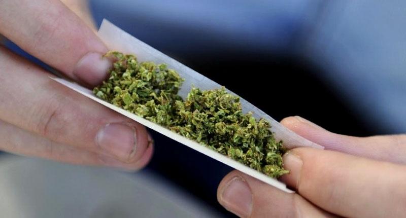 Rolling-a-marijuana-joint-800x430