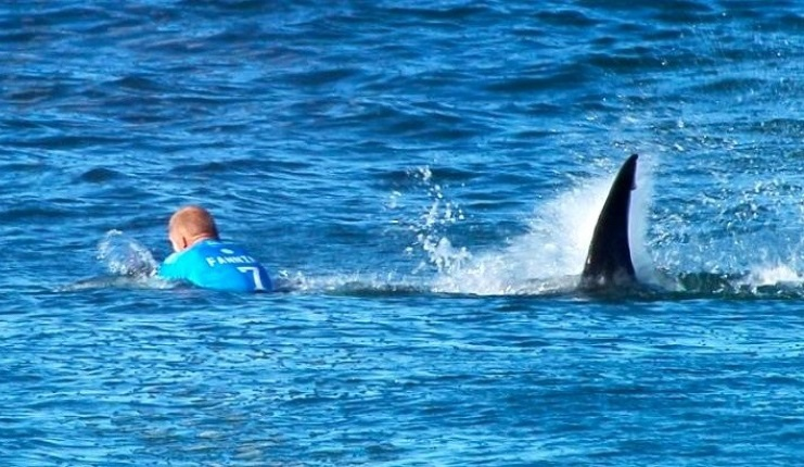 AFP/WSL/AFP - This handout screengrab made and released on July 19, 2015 by the World Surf League shows Australian surfer Mick Fanning being attacked by a shark during the Final of the JBay Surf Open in Jeffreys Bay