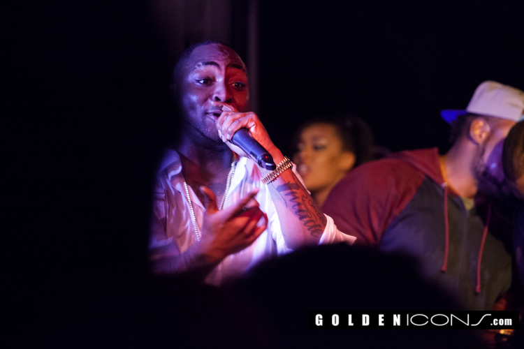 SouthWest-Golden Icons-Pix-237
