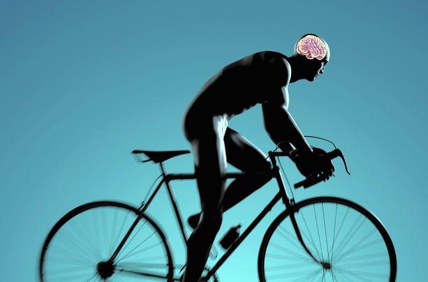 exercise-brain