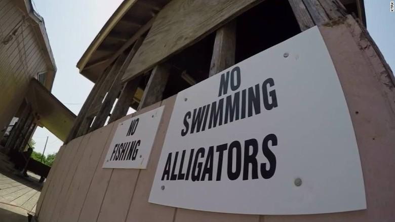 texas-alligator-attack